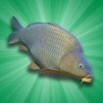 Carp Fishing Simulator – VER. 2.1.3 Unlimited Money MOD APK
