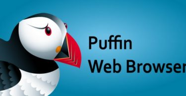 Puffin Browser Pro 7.8.3.40874 Apk