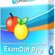 ExamDiff Pro Master Edition 10.0.1.16 with Key