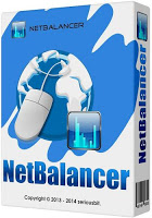 SeriousBit NetBalancer 9.13.1.2071 with Crack