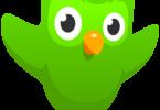 Duolingo Cracked APK