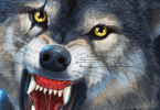 Wolf Simulator Evolution - VER. 1.0.2.3 Unlimited Money MOD APK